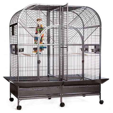 large cage large parrot cages cake ideas and designs