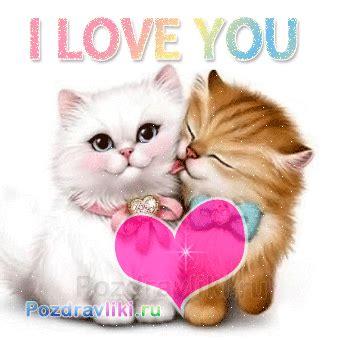 Kaos Fangkeh Lover Cat V Ii красивое признание в любви девушке стихи трогательные нежные и ласковые