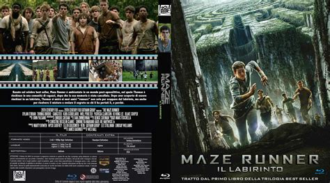 film maze runner dvd pics for gt maze runner dvd cover
