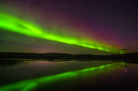 Northern Lights Tours by Northern Lights Tours Home