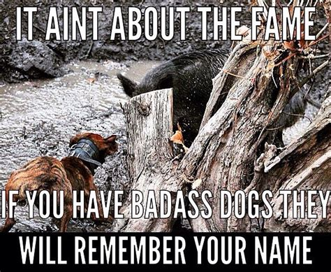 Hog Hunting Memes - it ain t about the fame bear chasin pinterest bear
