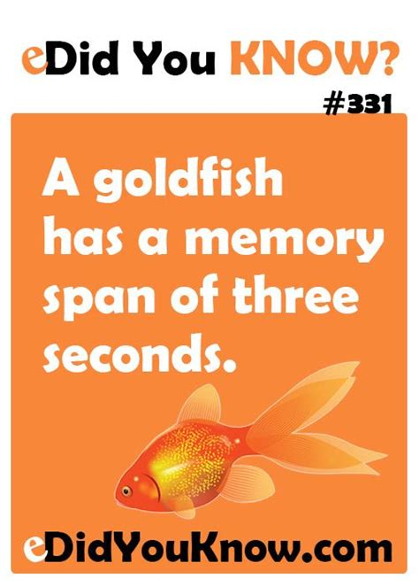 memory span a goldfish has a memory span of three seconds http edidyouknow did you 331