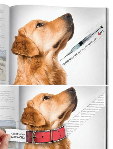 puppy ads the world s catalog of ideas