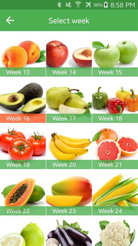 fruit 36 weeks pregnancy week by week android apps on play