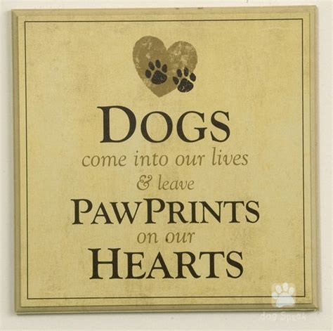 cute sayings for home decor 209 best german shepherd dogs images on pinterest german