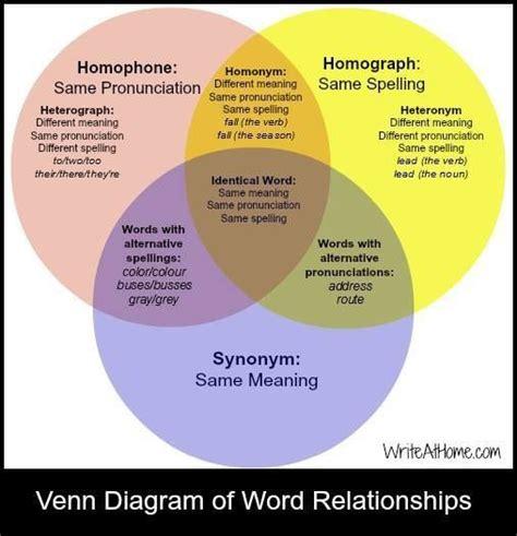 diagram synonym venn diagram of word relationships homophones homographs