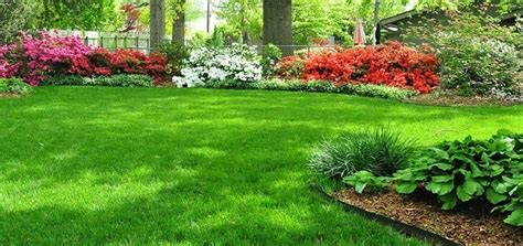 philadelphia lawn mowing weeding fertilizing edging