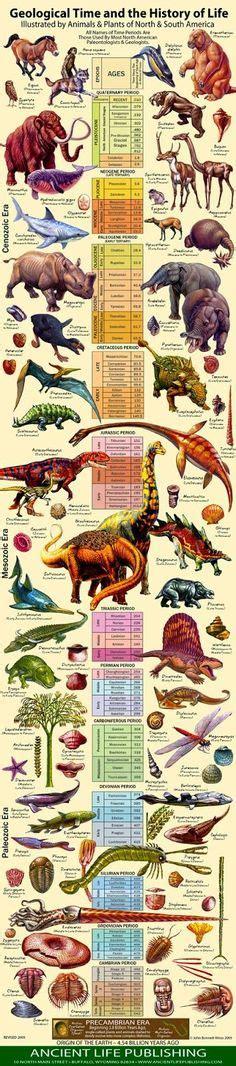 evolution the story of life the prehistoric eras dinosaur timeline zsite59 history evolution the story of life the prehistoric eras dinosaur timeline zsite59 history