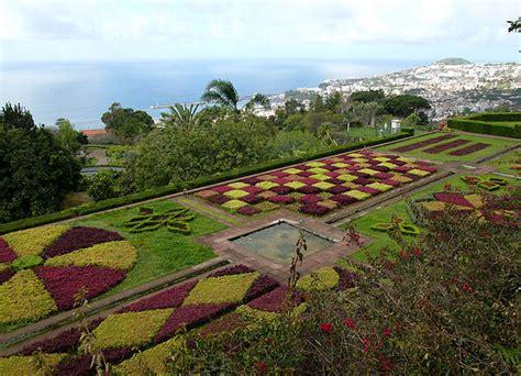 blumen und garten 2473 file botanical garden madeira hg jpg wikimedia commons