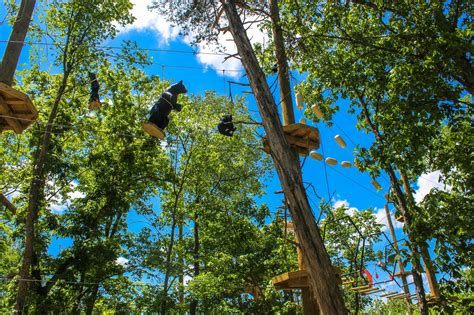 walmart country treetops floating treetops aerial park 25 ozark outdoors riverfront resort