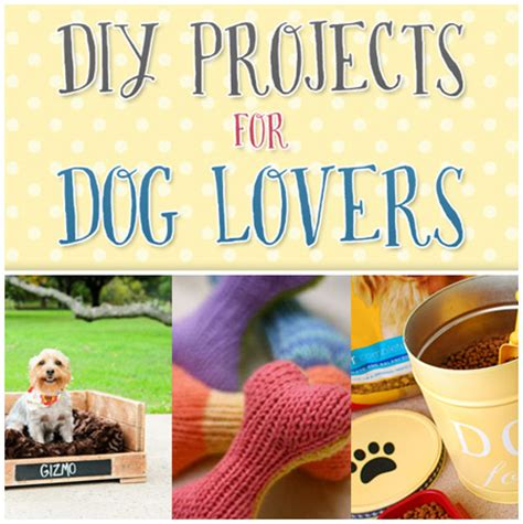 diy crafts for dogs diy projects for the cottage market