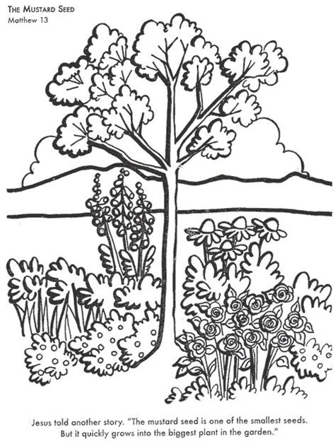 mustard tree coloring page the mustard seed childrenstory info children