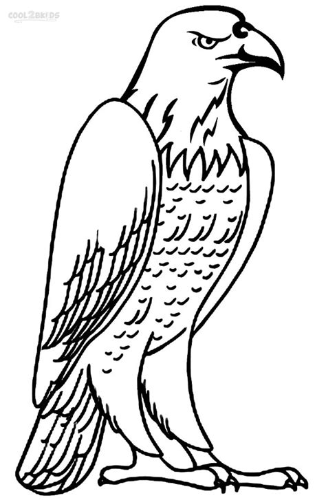 baby eagle coloring pages free coloring pages of baby eagle