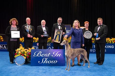 purina show 2017 2017 national show presented by purina tickets in oaks pa united states