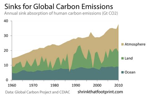 Types Of Carbon Sinks burning the carbon sink shrinkthatfootprint
