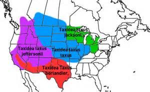 Southwestern Houses american badger earth rangers wild wire blog