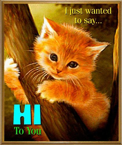 Just Wanted To Make A Few New Friends By Flommo On Deviantart The 25 Best Just Saying Hi Ideas On Hi Quotes Cheer Up Quotes And Cat3 Us