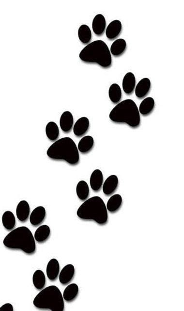 paw prints on wrist wrist prints wallpaper and