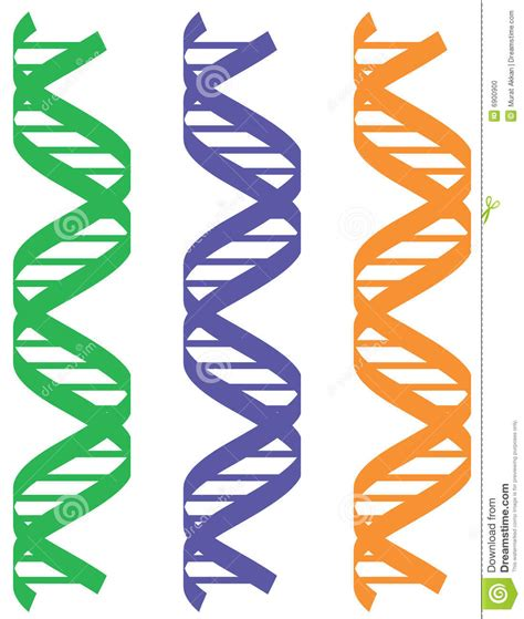 dna colors colorful dna patterns stock vector illustration of