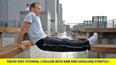 dips between benches 25 best ideas about tricep dips on pinterest chest