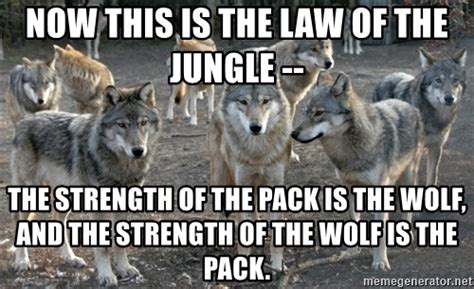 Wolf Pack Meme - now this is the law of the jungle the strength of the