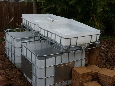 Aquaponic Grow Beds Ibc System One Fish Tank One Sump Tank Two Grow Beds