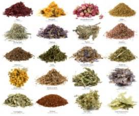 16 herbal teas with health facts to put on your grocery