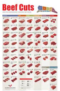 beef charts beef cutting charts and diagrams learn where every beef cut comes from purchase