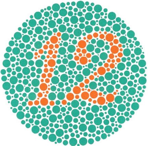 ishihara color blindness test the ishihara color