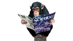 monkeys like science wallpaper