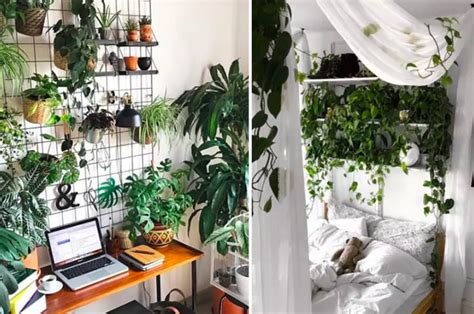 inspiring indoor gardens    doesnt