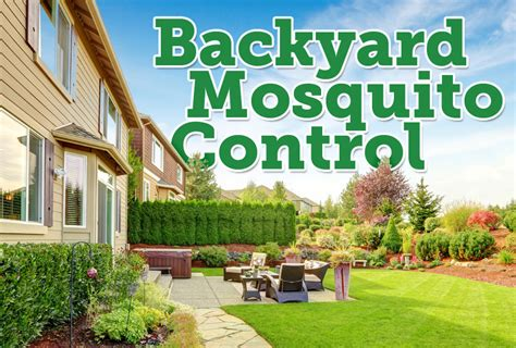 backyard pest control the best mosquito granules for backyards mosquito