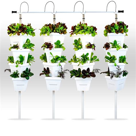 Vertical Hydroponic Garden - about me grow without soil hydroponics