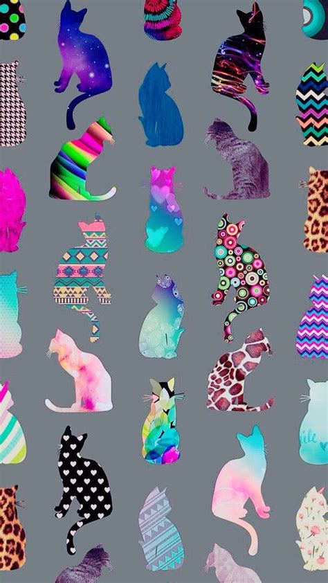 colorful cat wallpaper cats wallpaper background colourful colorful iphone