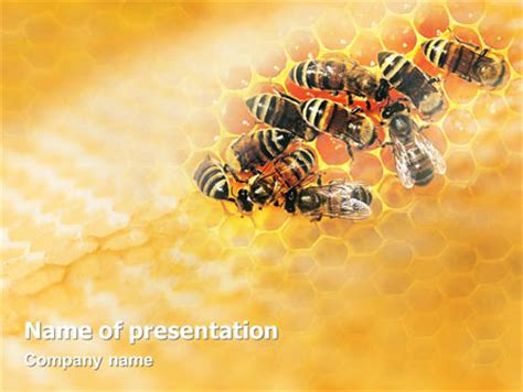 bee powerpoint template hydrogen fuel cells powerpoint templates and backgrounds