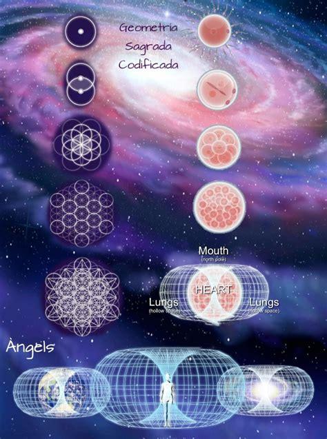libro geometria sagrada geometr 237 a sagrada el lenguaje de la geometr 237 a de la luz s 243 lidos plat 243 nicos