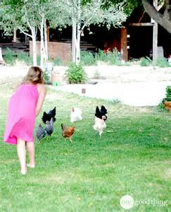 Raising Backyard Chickens Raising Backyard Chickens One Thing By Jillee