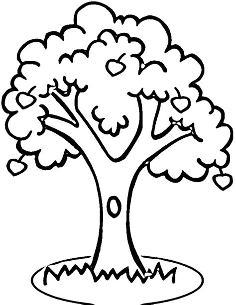 Apple Tree Outline Printable Clipart Best Tree Coloring Page Outline