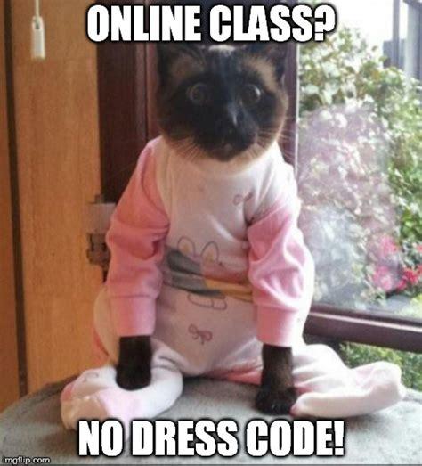 Online Class Meme - online class no dress code imgflip