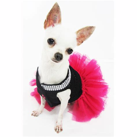 xxs puppy clothes xxs chihuahua clothes search engine at search