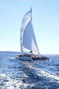 catamaran barcelona palma de mallorca catamaranes en alquiler para eventos en mallorca barcos y
