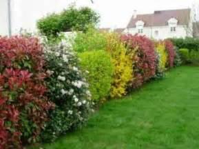 design jardin fleurie toute l annee denis 32