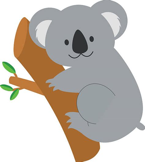 koala clip royalty free koala clip vector images illustrations