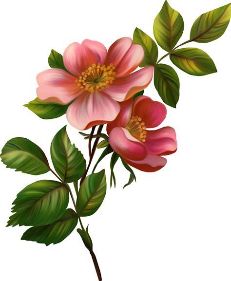 Dekoration Mit Fotos 3993 by розы цветы клипарт кира скрап клипарт и рамки на