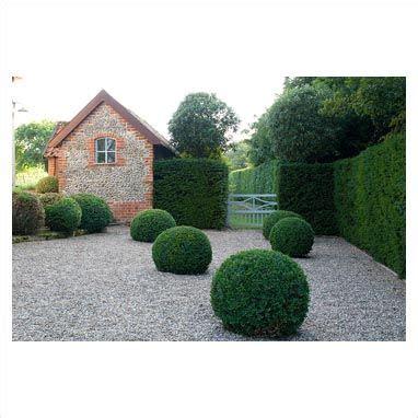 Kleiner Garten Gestaltung 2862 by 659 Besten Buchsbaum Bilder Auf Buecher
