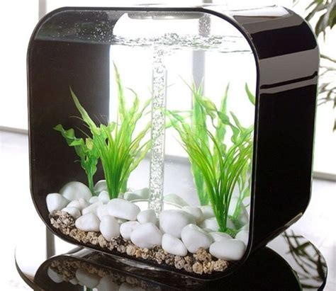 small aquarium decoration ideas aquarium design ideas