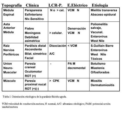cadenas musculares scielo par 225 lisis fl 225 cida en la infancia