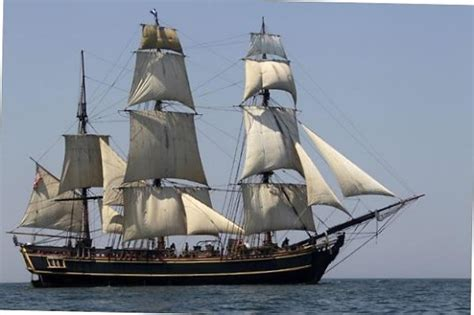 Sinking Of Ship Bounty Blamed On Captain S Reckless