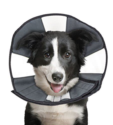 comfort cone for dogs 23 off zenpet procone pet e collar for dogs and cats