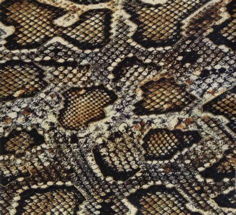 snake skin print on behance free shipping 2015 autumn fashion cool boa skin print